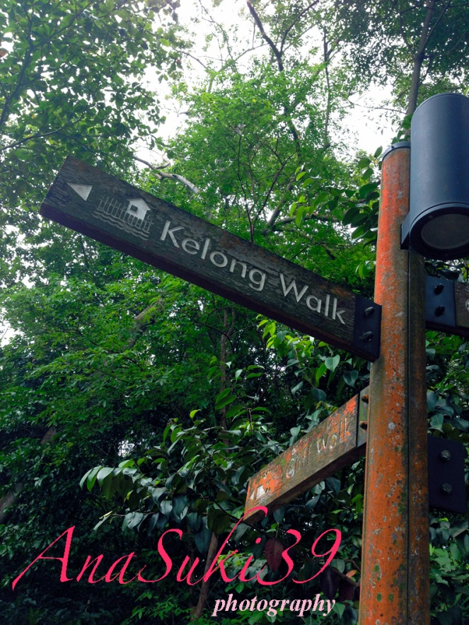 Passing by Kelong Walk